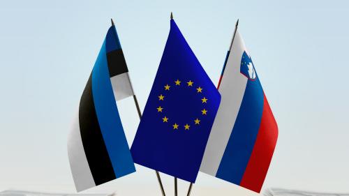 IBISBA and Baltic Partners