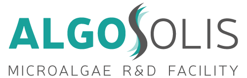 Algosolis-CAPACITES